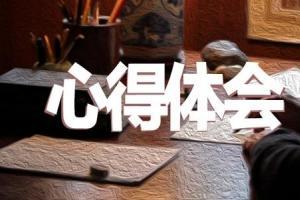 新时代中国特色社会主义学习体会心得【四章】